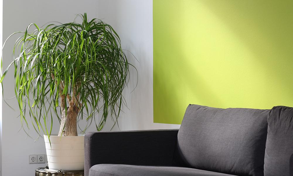 проект квартир в екатеринбурге дизайнерский ремонт квартир екатеринбург услуги дизайнера интерьера екатеринбург