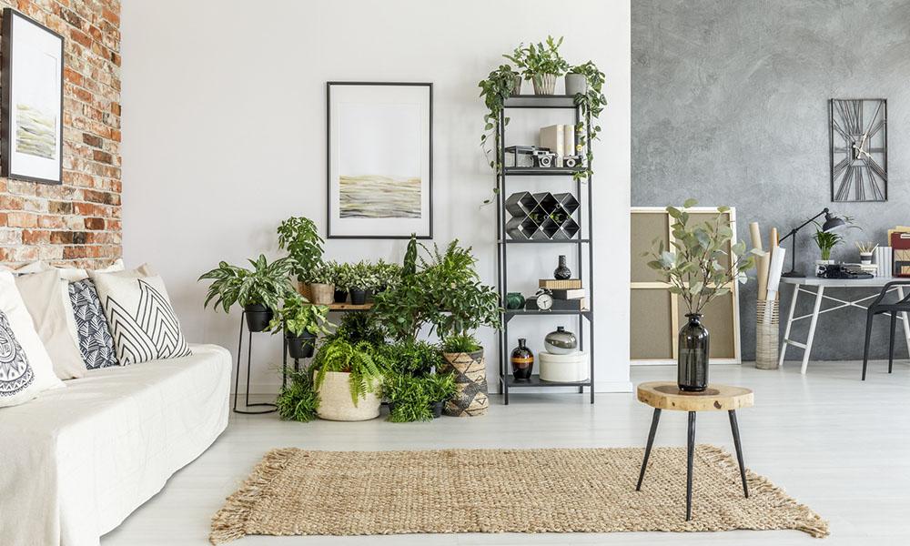 дизайн интерьера квартиры заказать дизайн современный дизайн дома