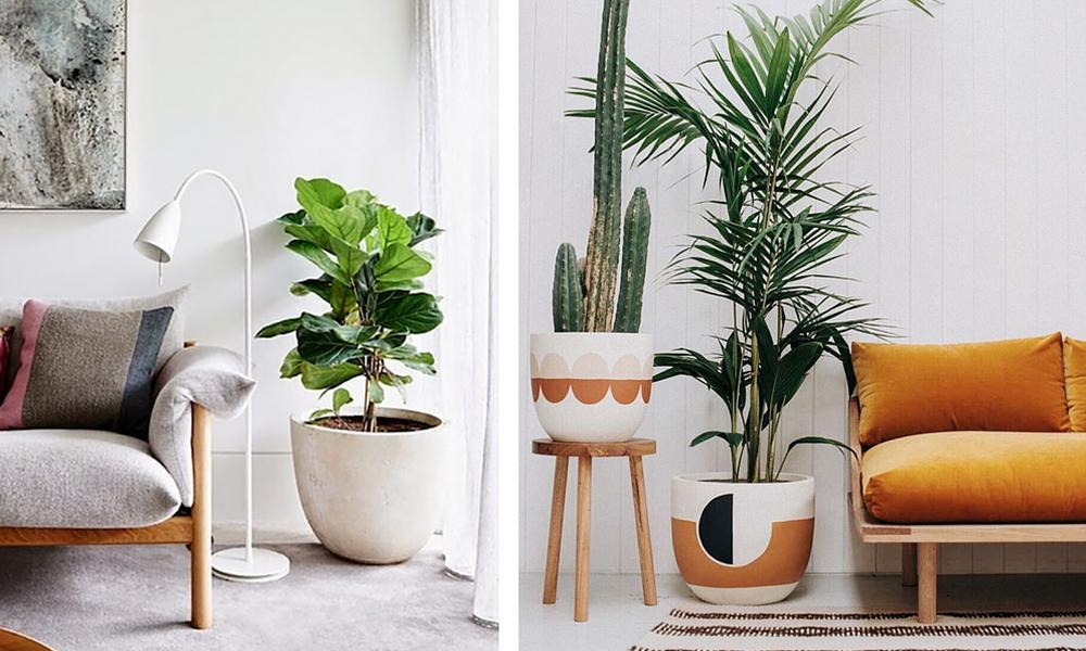 Как выбрать свой стиль для дома